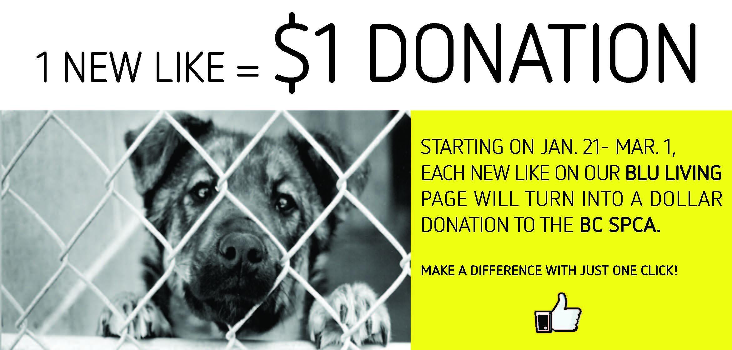 donation_highlight.jpg