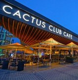 Coal Harbour Cactus Club